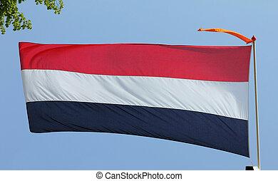 blå, nederländsk, sky, flagga