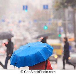 blå, paraply