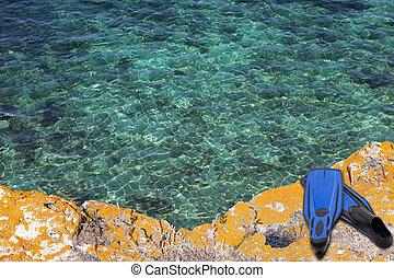 blå, simfötter, på, den, klippa, av, hav