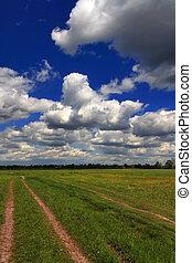 blå, skyn, över, skyfält, grön