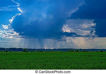 blå, sommar, stråle, sol, över, regna, clouds., mörk, fält, grön, horizon., genom, landskap