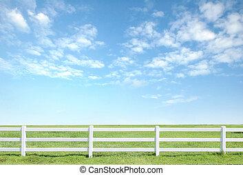 blå, staket, sky, gröna vita, gräs