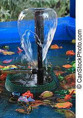 blå, trädgård, fish, plastisk, barns, fontän, slå samman, simning