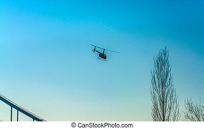blå, transport., silhuett, lappar, fjäder, fri, nymodig, sky, day., varm, light., sol, helikopter