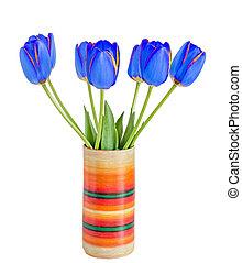 blå, tulipaner, blomster, hos, gul stribe, farvet, urtepotte, vase, grønnes forlader, rykke sammen, isoleret, på hvide, baggrund