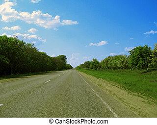 blå, vid, skyn, över, sky, forest., grön, motorväg