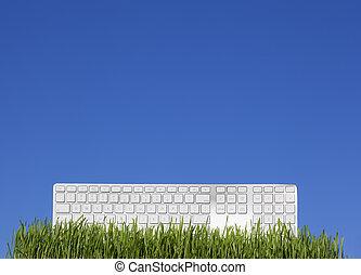 blå, vit, gräs, sky, tangentbord