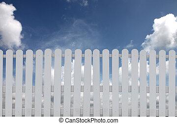 blå, vita fäkta, sky.