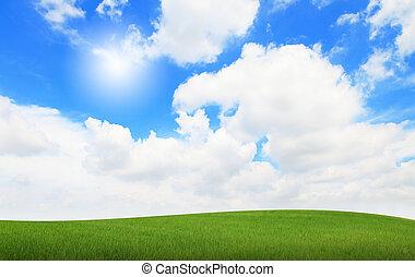 blåa gröna, solsken, sky, gräs