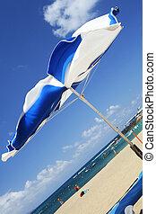 blåsigt, strand scen