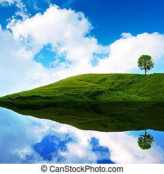 blåttsky, grönt tåra, in, den, gräsmatta