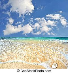 blåttsky, hav, trevlig