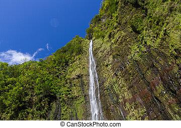 blåttsky, yppig, mot, vattenfall, bakgrund