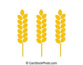 blé, doré, oreilles, plat, icon.