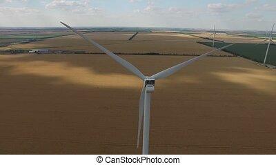 blé, fond, aérien, champs, surmontez, jaune, prés, vert, mer, banques, fin, vue., turbine, vent, survey.