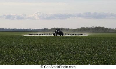 blé, jeune, élevé, fertilisant, confection, roues, tracteur