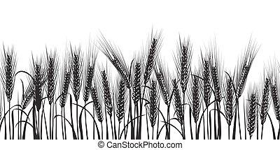blé, modèle, seamless, noir, horizontal, oreilles