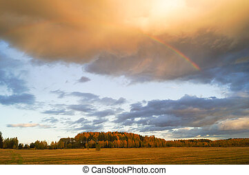 blé, orageux, sur, sombre, champ, nuages