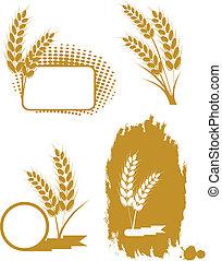 blé, oreilles, ensemble