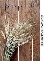 blé, paquet, oreilles