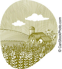 blé, paysage