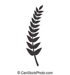 blé, silhouette, pointe