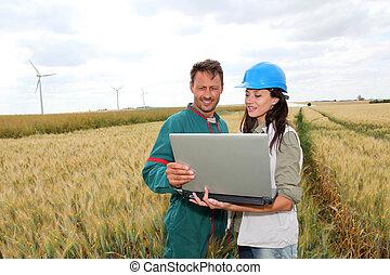 blé, turbines, champ, fond, paysan, vent, ingénieur
