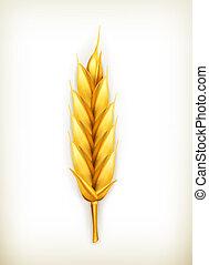 blé, vecteur, icône
