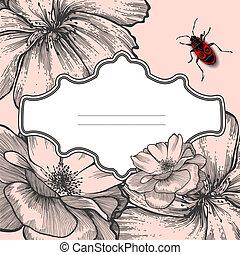 blühen, vektor, käfer, hand-drawing., rosen, rahmen, weinlese, illustration.