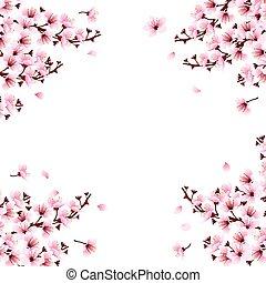 Blüte, kirschen, blumen