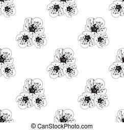 blüte, pflaume, weißes, seamless, hintergrund