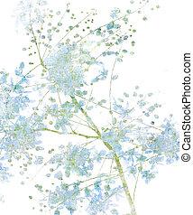 blüte, weiße blume