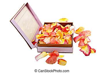 blütenblätter , von, rosen, in, a, schöne , rosa, kasten