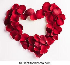 blütenblatt, herz, rose
