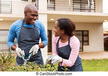 black összekapcsol, kertészkedés