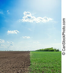 black agriculture field and blue sky with clouds