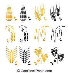 Black and gold cereal grains vector icons. rice, wheat, corn, rye, barley isolated on white background