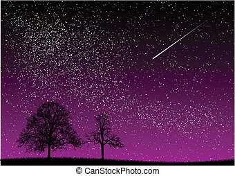 night - black and purple dark night