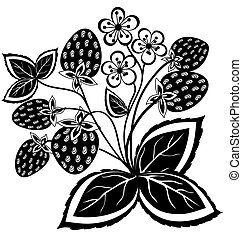 black and white abstract strawberry, flower with leaves and swirls isolated on white background