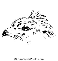 Black and white angry eagle head hand drawn on white...