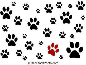 black and white background with paws