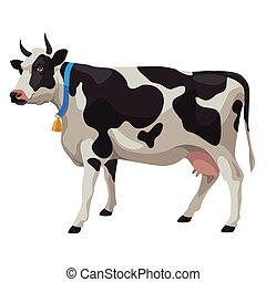 Black and white cow with bell, side view, isolated