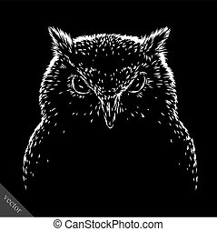 black and white engrave evil vector owl bird