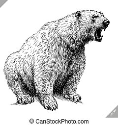black and white engrave isolated bear vector illustration -...