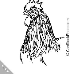 black and white engrave isolated chicken illustration -...