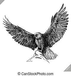 black and white engrave isolated eagle vector illustration -...