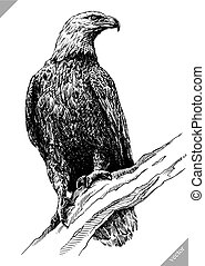 black and white engrave isolated eagle vector art