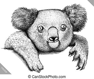 black and white engrave isolated Koala vector illustration -...