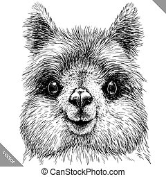 black and white engrave isolated Lama vector illustration -...