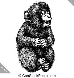 black and white engrave isolated monkey vector illustration...